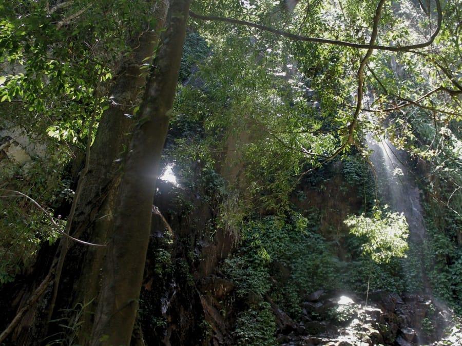 TravelXL-van-Limburg-MALEISIE-jungle-waterval