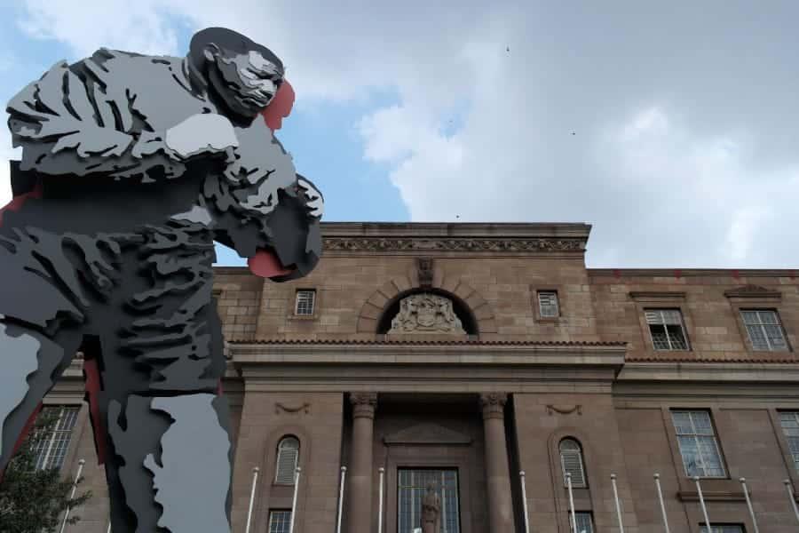 TravelXL-van-Limburg-LIMPOSO-Nelson-Mandela-standbeeld-bokser