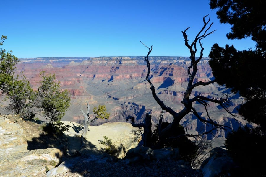 travelxl-van-limburg-usa-grand-canyon-diepe-kloof